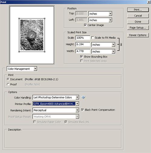 Printing Insights 45