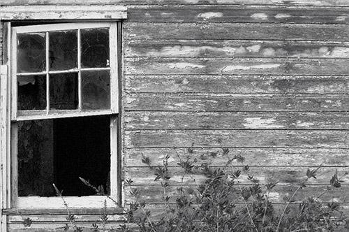 essay digital outback photo